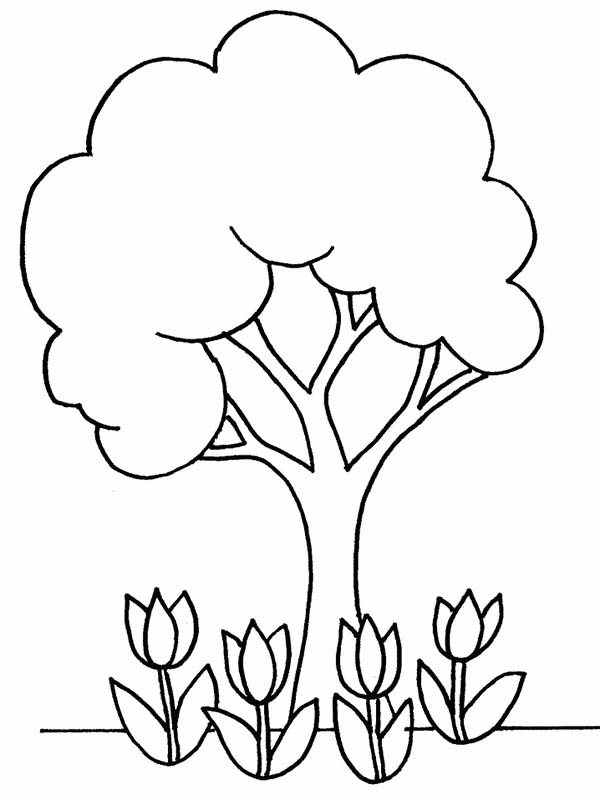 Flowers And Tree Plant Coloring Page : Coloring Sky