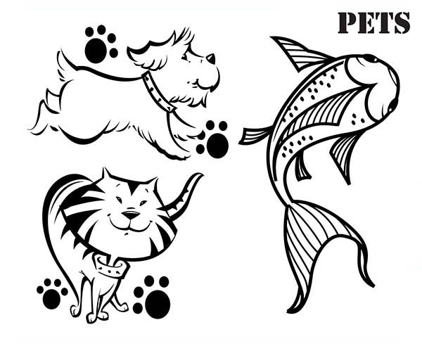 Pet, : Funny Animal for Pet Coloring Page