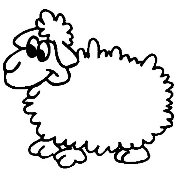 Sheep, : Funny Sheep Picture Coloring Page