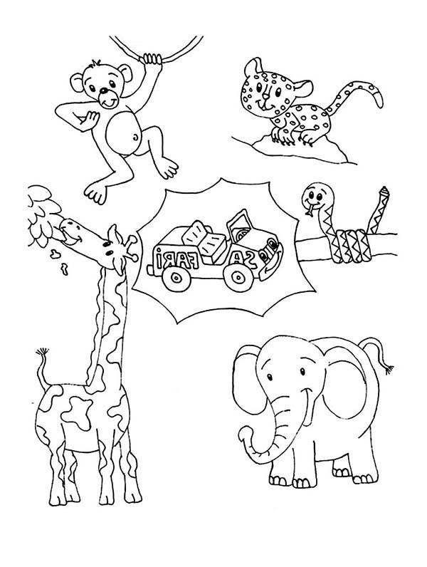 Safari, : Happy Safari Coloring Page