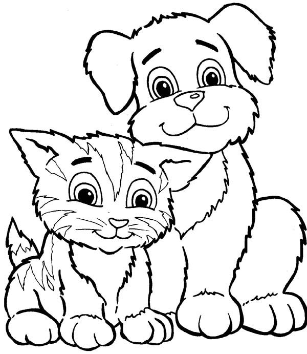 Pet, : How to Draw Pet Coloring Page