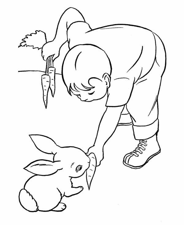 Little Kid Feed His Pet Rabbit A Carrot Coloring Page Coloring Sky