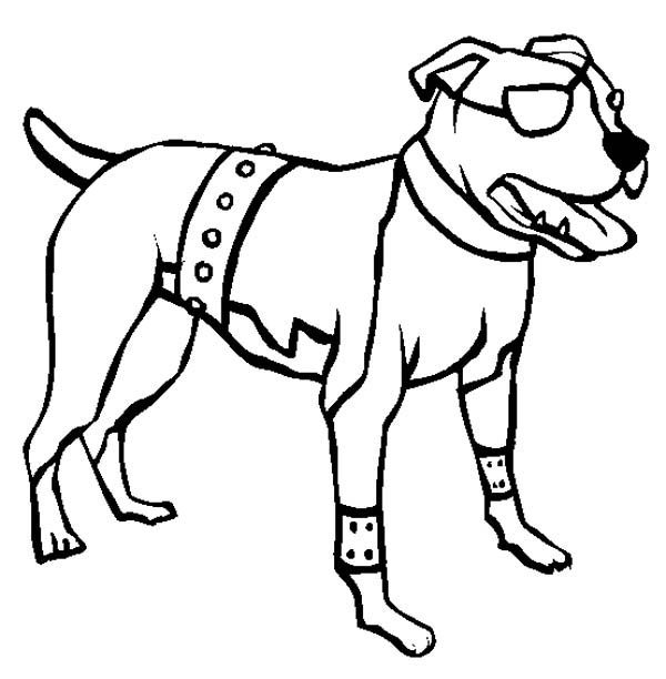Pitbull, : One Eyed American Pitbull Terrier Coloring Page