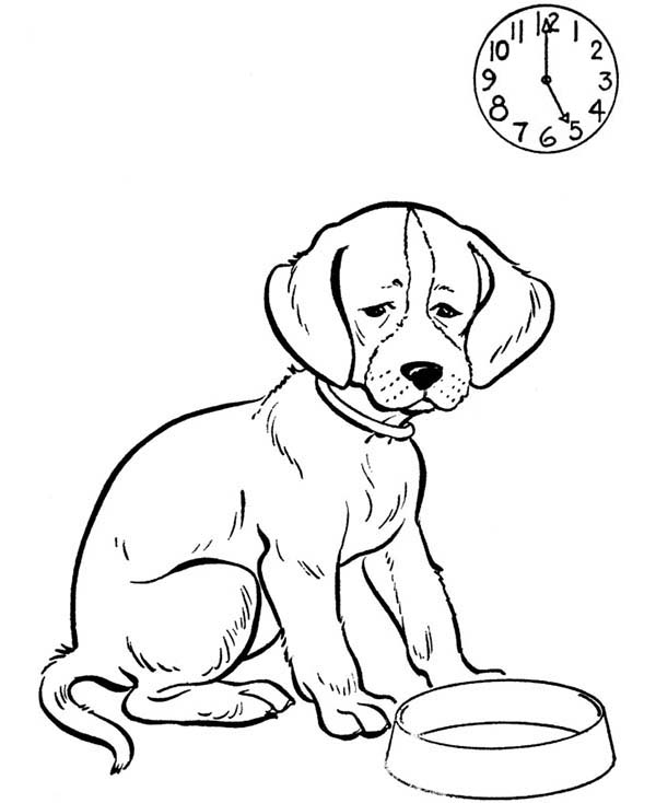 Pet, : Pet Dog Waiting for His Meal Coloring Page