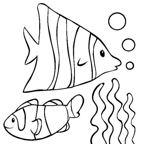 Pet, : Pet Fish in Aquarium Coloring Page