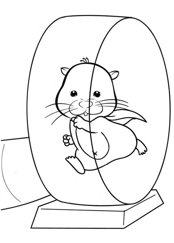 Pet, : Pet Hamster Running on Exercise Wheel Coloring Page