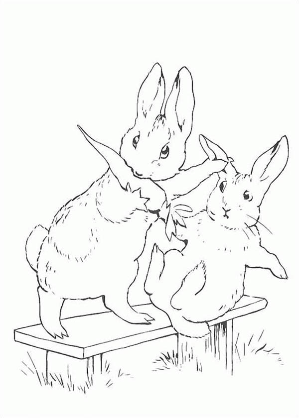 Peter Rabbit, : Peter Rabbit Sister Snatching Carrot Coloring Page