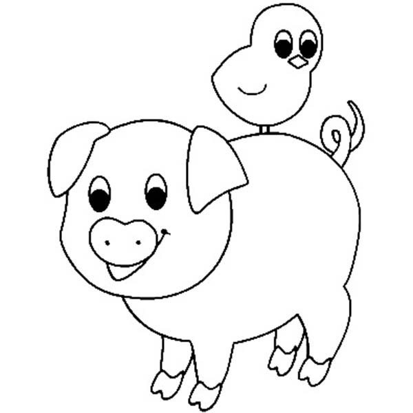 Pig, : Pig Friend with Bird Coloring Page