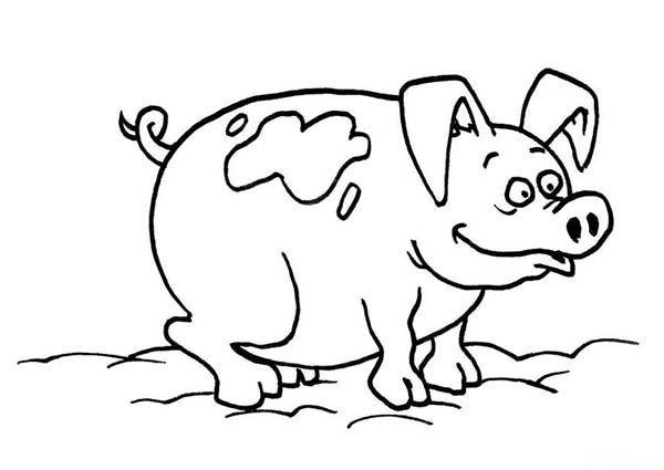 Pig, : Pig Mud Bath Coloring Page