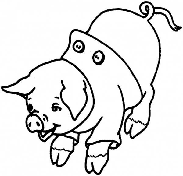 Pig, : Pig Wear Clothes Coloring Page