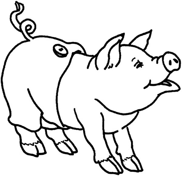 Pig Wearing Pants Coloring Page Coloring Sky