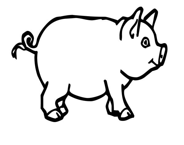 Pig, : Pig for Bacon Coloring Page