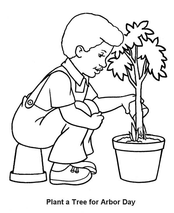 Plants, : Plants a Tree fro Arbor Day Coloring Page