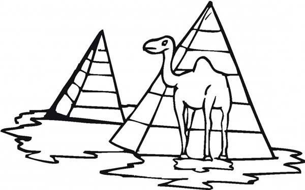 Pyramid, : Pyramid and Camel Coloring Page