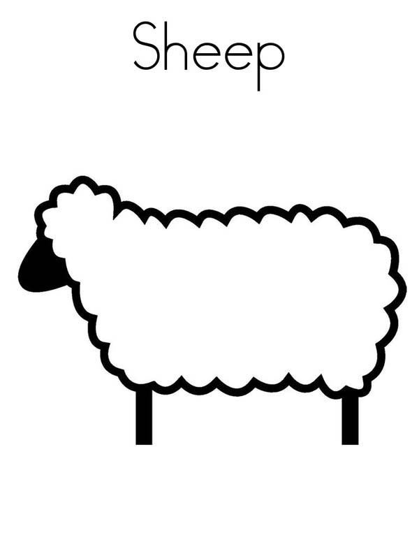 Sheep, : S is for Sheep Coloring Page