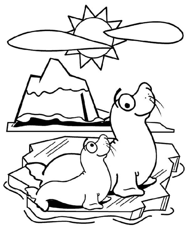 seal mask coloring pages - photo#48