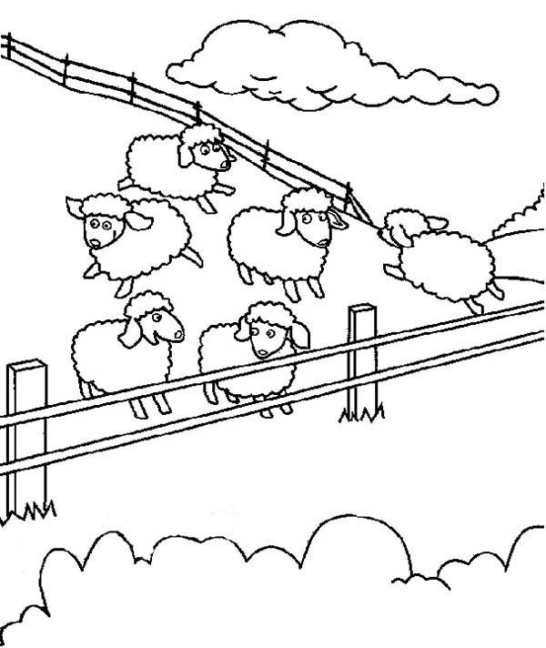 Sheep, : Sheep Farms Coloring Page