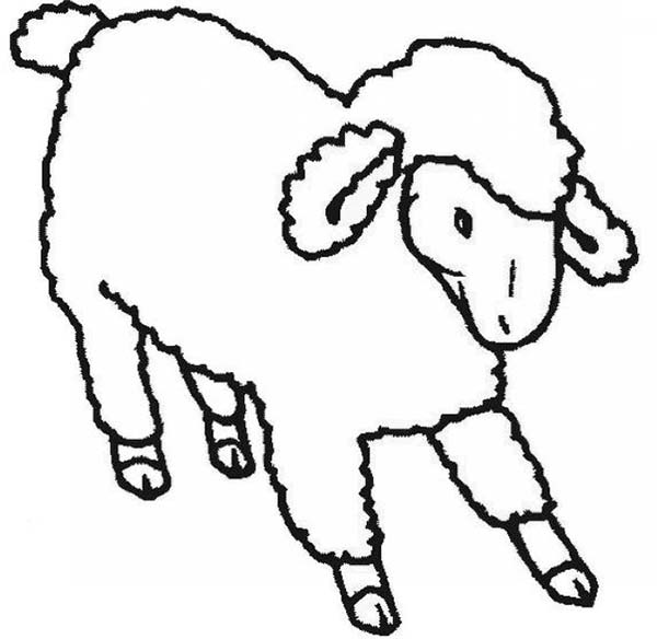 Sheep, : Sheep Stretching His Feet Coloring Page