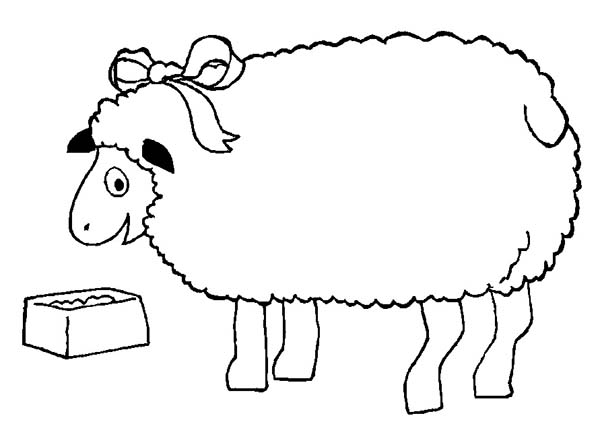 Sheep, : Sheep Wearing Ribbon Eating Lunch Coloring Page