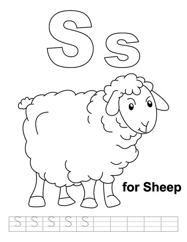 Sheep, : Sheep Worksheet Coloring Page