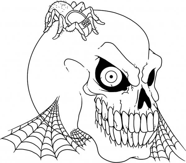 Skull, : Skull and Spider Coloring Page