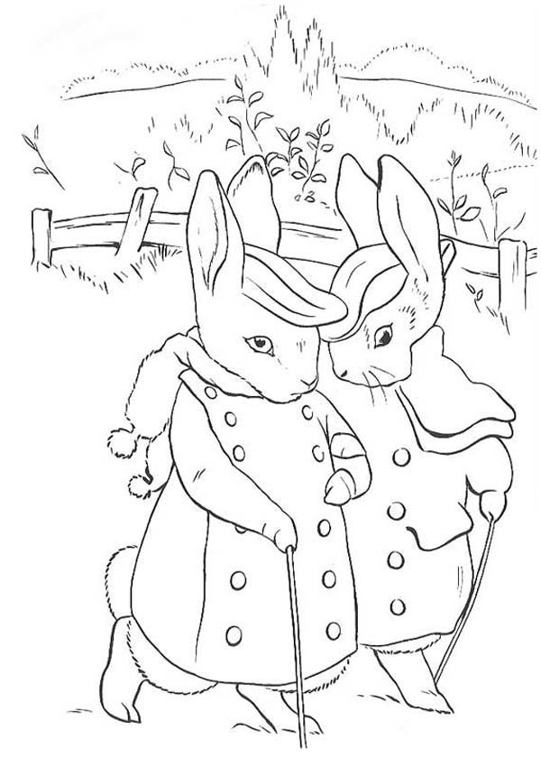 Peter Rabbit, : The Tale of Peter Rabbit Coloring Page