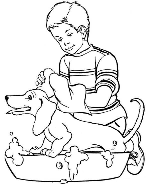 Pet, : Washing Pet for Healthiness Coloring Page