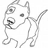 pitbull coloring page coloring sky pitbull coloring page coloring sky