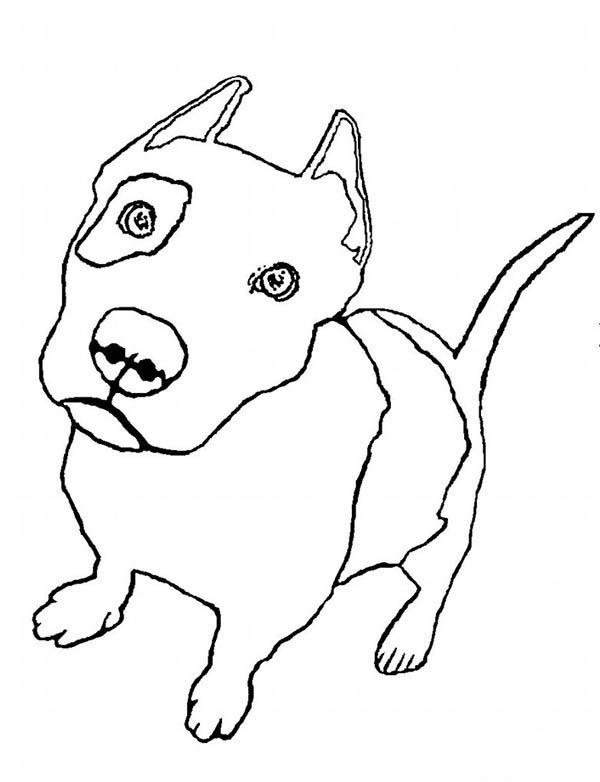 Pitbull, : Zombie Pitbull Coloring Page