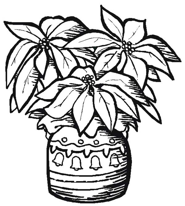 Poinsettia Day, : Pottery Poinsettia for Poinsettia Day Coloring Page