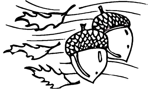 The Best Place For Coloring Page At Coloringsky Part 48