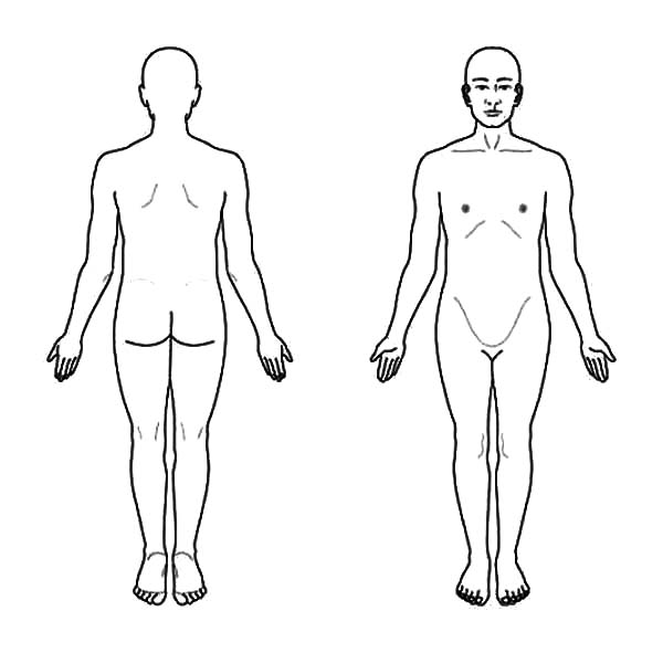 Human Body, : Drawing Full Human Body Coloring Pages