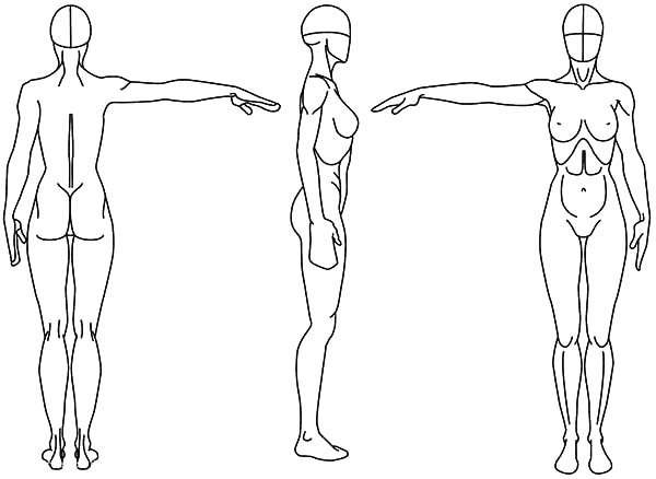Human Body, : Female Human Body Reference Drawing Coloring Pages