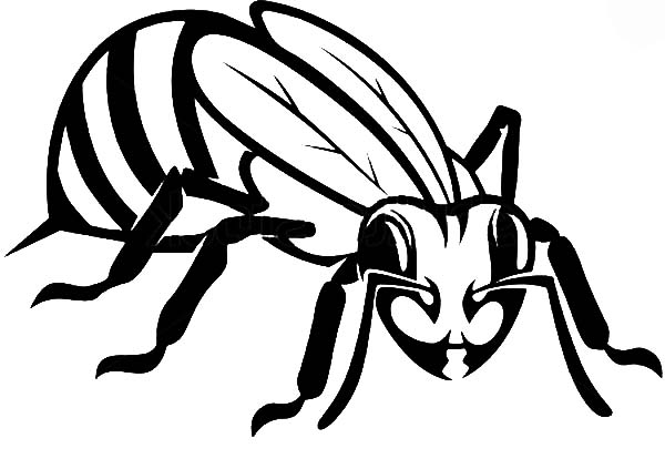 Honey Bee, : Honey Bee Feeling Threatened Coloring Pages