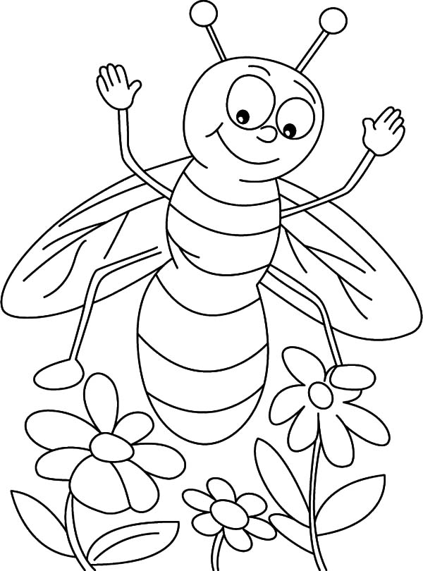 Honey Bee, : Honey Bee Found Three Flowers Coloring Pages