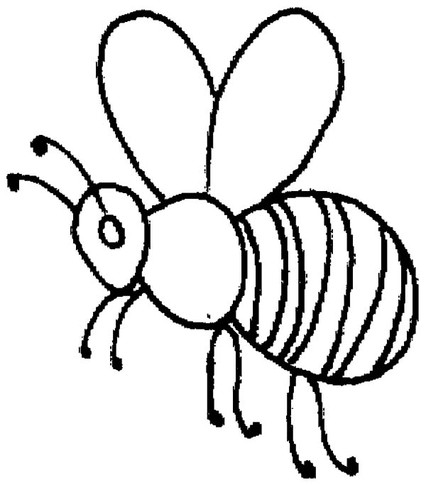 Honey Bee, : Honey Bee Outline Coloring Pages