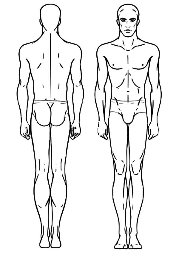 Human Body, : Human Body Coloring Pages