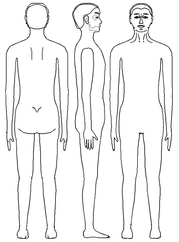 Human Body, : Human Body Comparison Coloring Pages