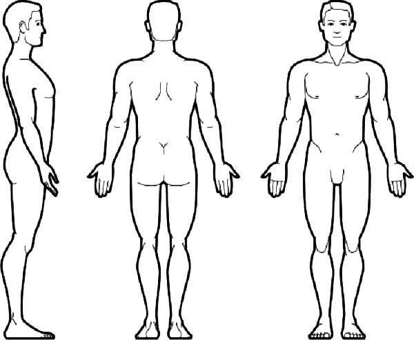 Human Body, : Human Body Front and Back Coloring Pages