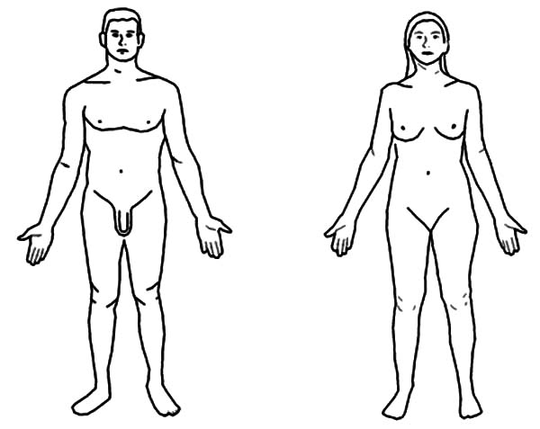 Human Body, : Man and Woman Human Body Coloring Pages