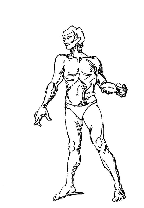 Human Body, : Muscular Human Body Coloring Pages