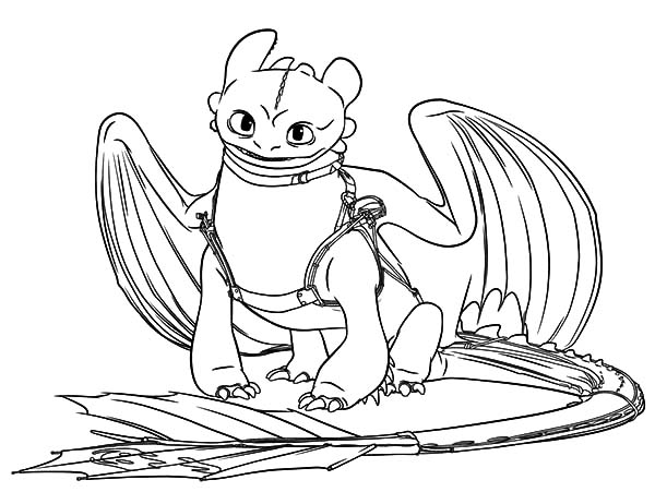 How To Train Your Dragon, : Night Fury Ready for Adventure in How to Train Your Dragon Coloring Pages