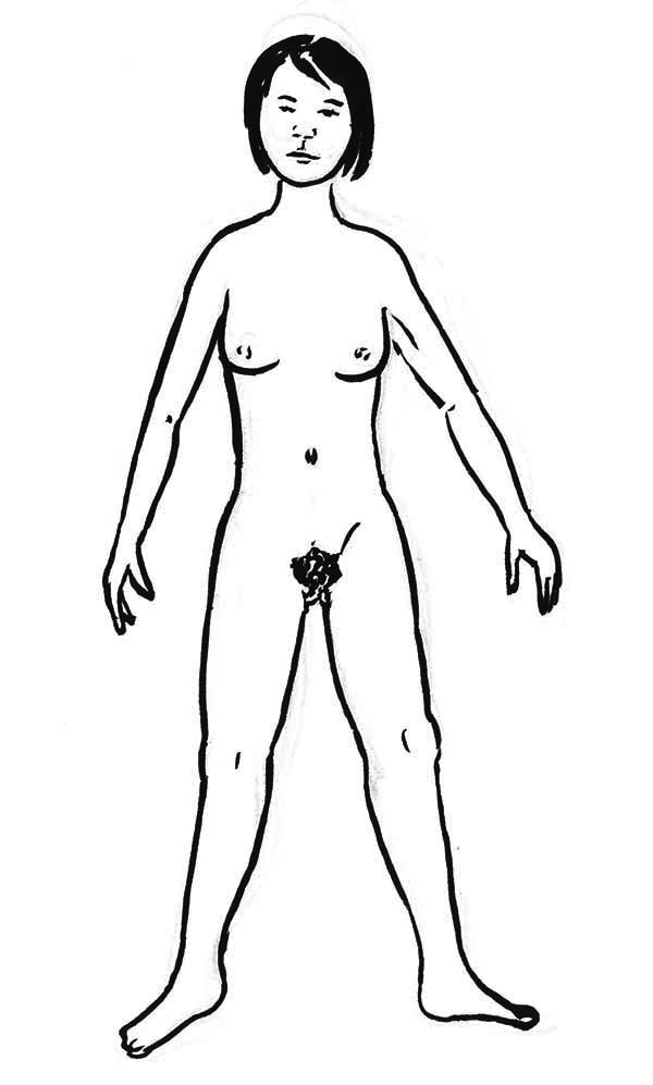 Human Body, : Outline of a Female Human Body Coloring Pages
