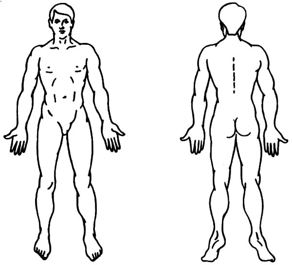 Human Body, : Perfect Human Body Coloring Pages