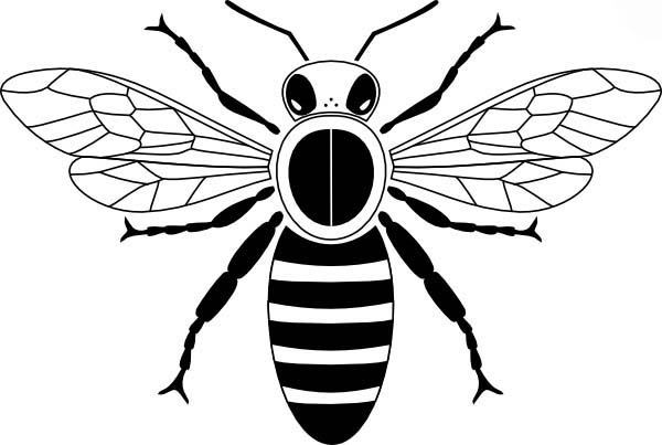 Honey Bee, : Pictogram of Honey Bee Coloring Pages