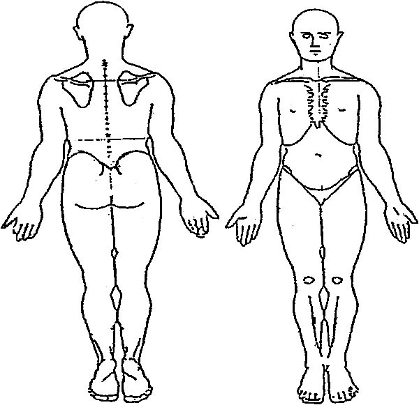 Human Body, : Microsoft Word - Figure 1_Body Diagram