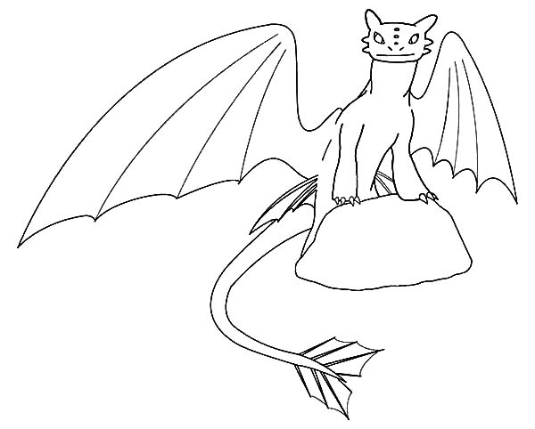 How To Train Your Dragon, : Toothless Standing on Rock in How to Train Your Dragon Coloring Pages